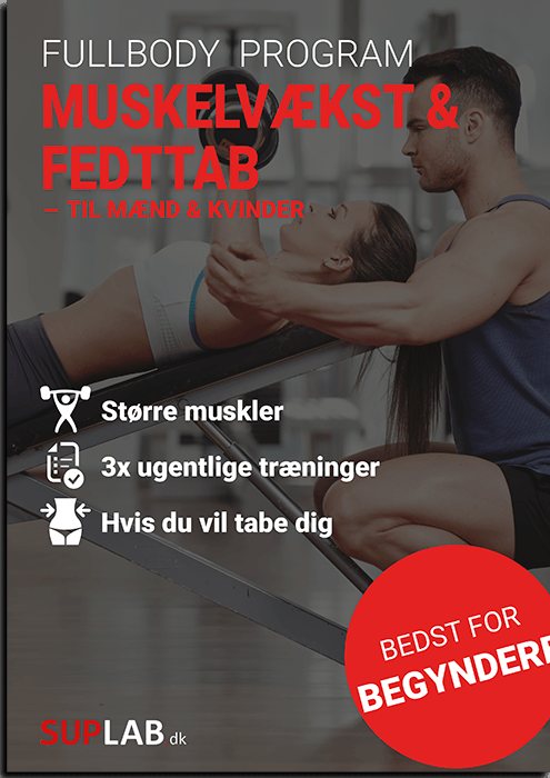 fullbody program øvede
